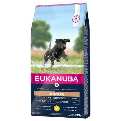 Eukanuba Junior Large Breed Chicken - säästöpakkaus: 2 x 15 kg