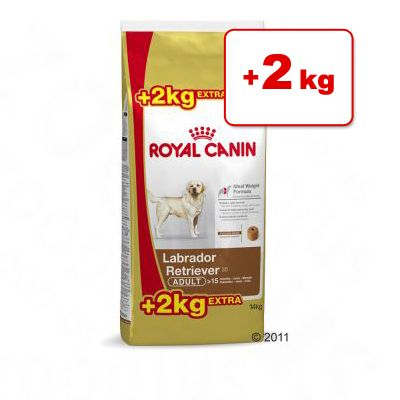 Royal Canin Breed -bonuspakkaus 12 kg + 2 kg - Golden Retriever Adult