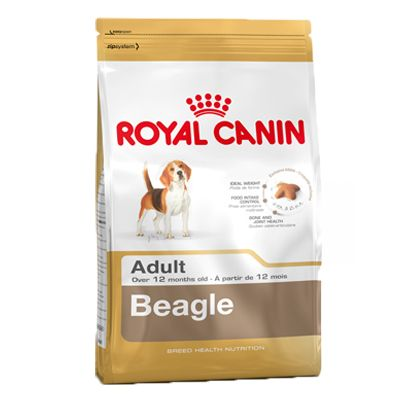 Chien Croquettes Royal Canin Breed Beagle