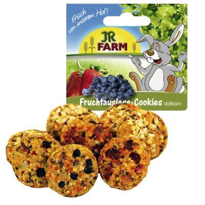 JR Farm fullkornskex med frukturval – 2 x 8 st