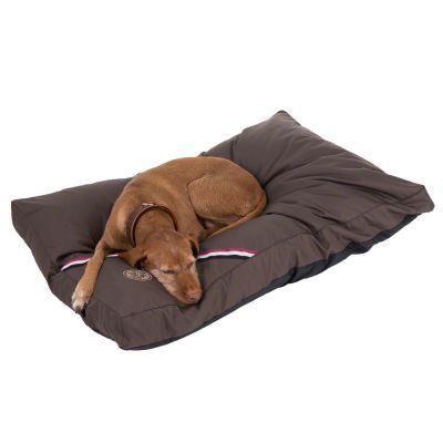 Champion hundkudde – L 120 x B 80 x H 10 cm