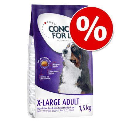 1,5 kg Concept for Life -koiranruokaa kokeiluhintaan! - Golden Retriever Adult