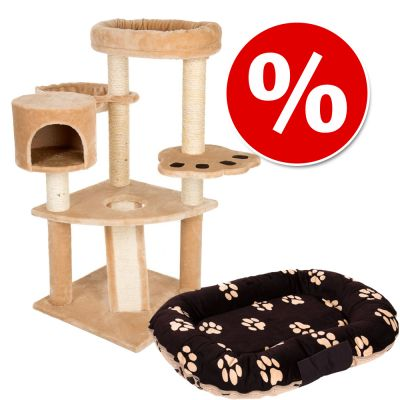 Säästöpaketti: Karhunluola-raapimispuu + Branca 2in1 / Strong & Soft Paw -peti - Karhunluola-raapimispuu + Branca-kissanpeti