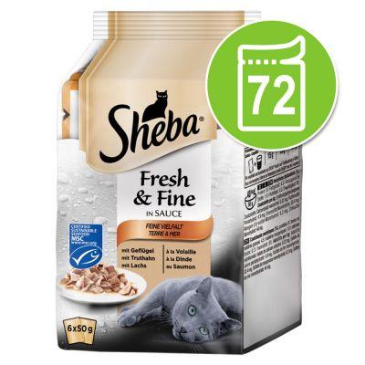 Sheba Fresh & Fine Pouches -säästöpakkaus 72 x 50 g - kalahyytelölajitelma