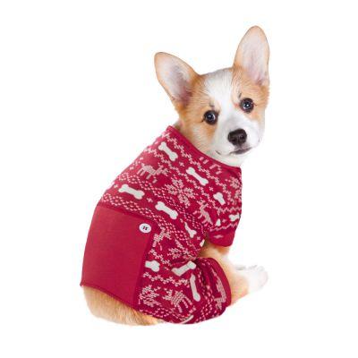 Talvinen koiran oloasu - selän pituus noin 40 cm (koko L)