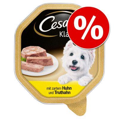 Cesar koiranruoka erikoishintaan! - Country Kitchen Favourites -lajitelma (8 x 150 g)