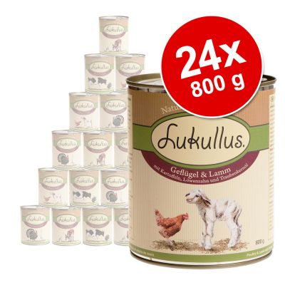 Ekonomipack: Blandade sorter Lukullus 24 x 800 g – Variant II