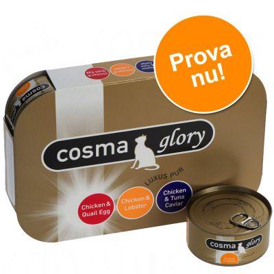 Blandat provpack: Cosma Glory i gelé – 6 x 85 g med 3 blandade sorter