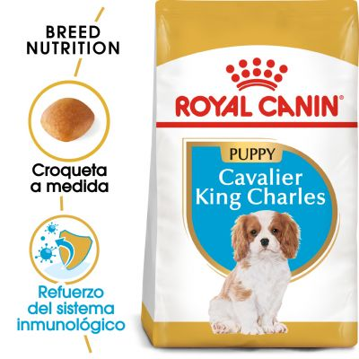 Royal Canin Cavalier King Charles Puppy - 1,5 kg