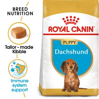 Royal Canin Breed Dachshund Puppy - 1,5 kg