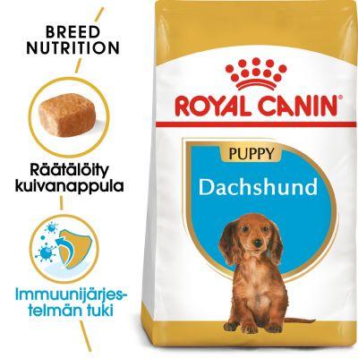 Royal Canin Breed Dachshund Puppy - 1,5 kg