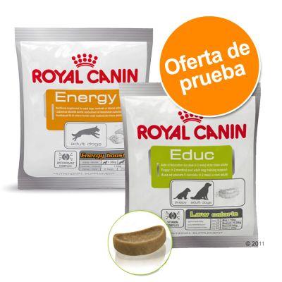 Pack mixto: Royal Canin snacks adiestramiento 2 x 50 g - 2 x 50 g
