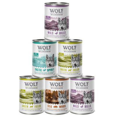 Sparpaket Wolf of Wilderness Adult - gemischtes Paket