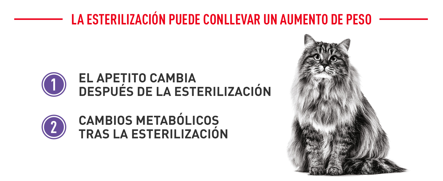 Royal Canin Appetite Control Sterilized
