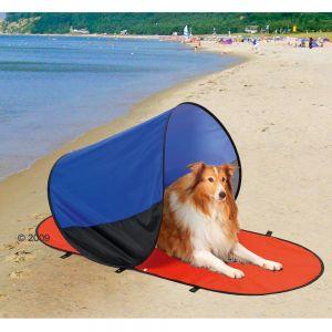 ir a la playa con perro